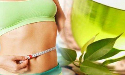 Зеленый чай как способ похудеть