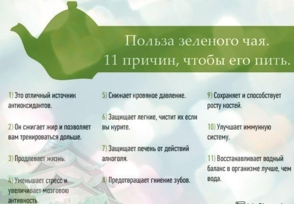Зеленый чай — польза и вред