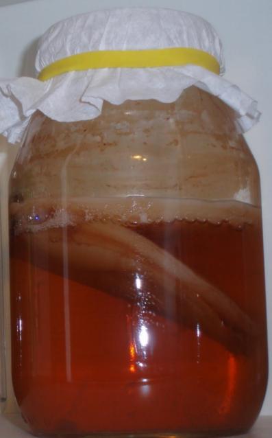 На фото чайный гриб