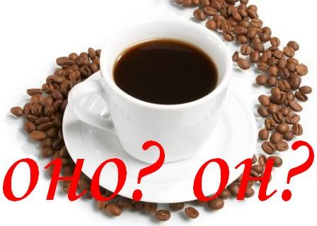 Род кофе: средний или мужской?